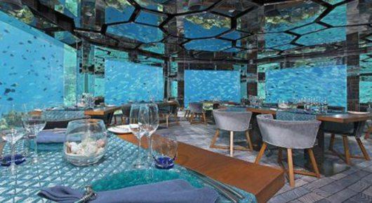 Feed anantara kihavah maldives sea underwater restaurant 255