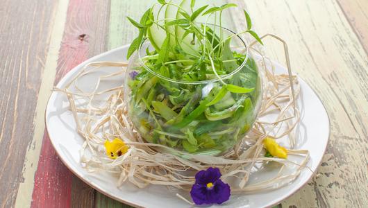 Feed ovoschnoy salat