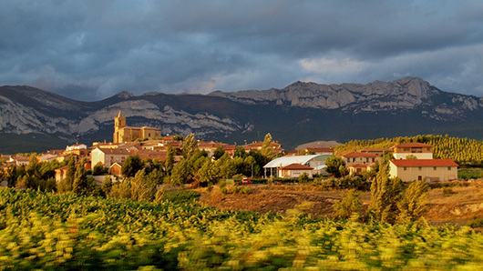 Feed navaridas rioja region spain by  taniazapata