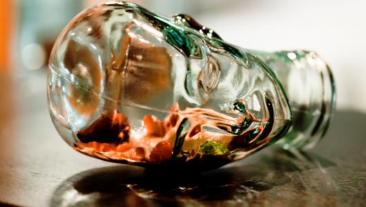 Feed vynos mozga