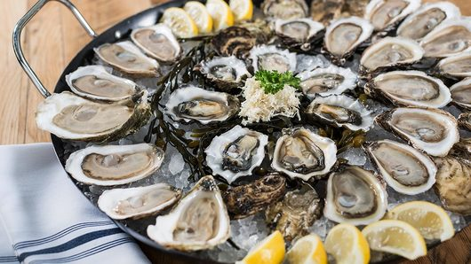 Feed oysters