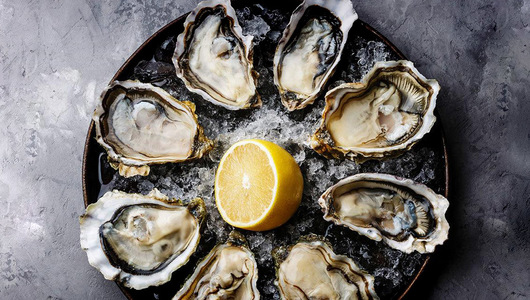 Feed oysters   2.5