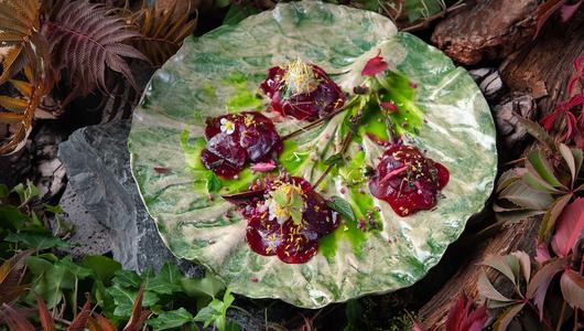 Feed modus tartar iz svekli i malini v sochetanii s langustinami i vodicei iz seldereya i ogurca