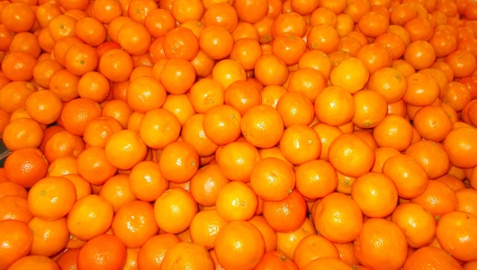 Feed plant fruit orange food produce vegetable tangerine kumquat clementine vegetarian food citrus flowering plant mandarin orange land plant tangelo 833816