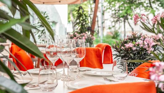 Feed blush veranda 3 1